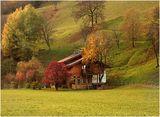 цветовете на алпийската есен ; comments:74
