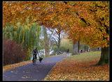 Късна есен в Мюнстер ; comments:87