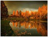 Тихи есенни вечери ; comments:244