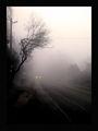 Някъде из мъглите... ; comments:43