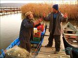 Fishermans ; comments:12