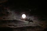 Луната спи... ; Comments:17