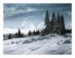 Снежна тишина ; comments:97