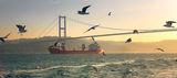 bosphorus bridge ; comments:35