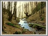 пътят на водата ; comments:25