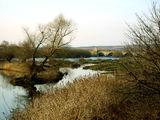 Старият Мост ; Comments:12