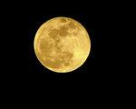 На Луната, с любов! ; comments:26