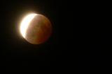 Lunar Eclipse ; comments:5