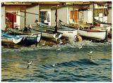 . . . рибарите . . . ; comments:39