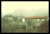 Родопите, село Борово ; comments:4