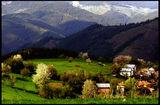село Гела ; comments:23