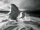 Winter Portraits ; comments:60