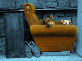 Барби и Малчо в още по-дълбоки натюрмортни размисли ; comments:112