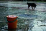 Сам под дъжда ; comments:12