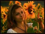 Габи и слънчогледите ; comments:38