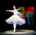 във вихъра на танца ; comments:10
