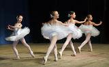 пак е от балета ; comments:8