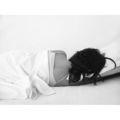 Сън в бяло ; comments:4