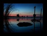 Вълшебната сутрин на едно врабче... ; comments:65