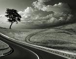 Пътища ; comments:92