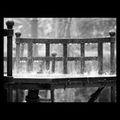...Дъждовно настроение 4 ; comments:31