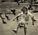 история с гълъби ІІІ ; comments:42