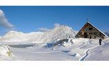 мечти за снежни човеци II ; comments:54