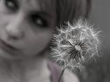 едно цвете и едно ; comments:17