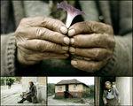 приказка за една къща на една улица, където живее една баба с едно цвете в ръка :))) ; comments:54