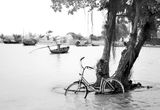 one bicycle and one boat ; comments:12