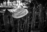 шапка на тояга ; comments:14