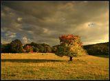 есенна приказка ; comments:64