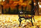 Есенно ; comments:71