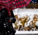 Снежинка ; Comments:10