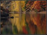 Есенно Спокойствие ; comments:36