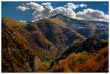 Есенна палитра ; comments:48