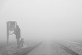 Fog ; comments:20