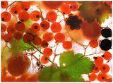 замразени плодове ; comments:39