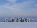 зима е ; Comments:10