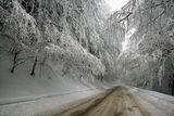 Зимно ... ; comments:79