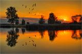 Бавно догаря денят...самотен крясък.....или плясък на птичи крила... ; comments:90