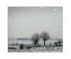 Зима ; comments:17
