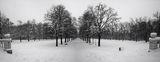 Студ и Мраз в Борисовата ; comments:17
