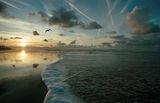 Северно море ; comments:64