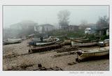 Морска мъгла 2 ; comments:86