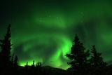 Aurora Borealis ; comments:66