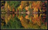 Есенно Отражение 5 ; comments:26
