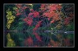 Есенно Отражение 3 ; comments:21
