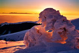 Ледена епоха ; comments:45