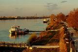 Разходка край Дунав ; comments:61